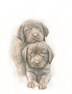 Art and wellbeing. Labrador puppies painting.